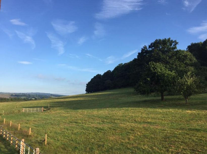 Heart of England/Orchard View, Pontypinna Farm , Golden Valley